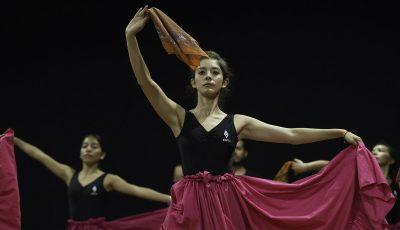 carrera-bailarin-ejecutante-1